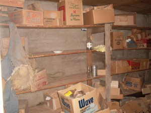 Back Room Basement