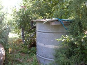 Cistern, Above-Ground Tank, Homestead - August 2009