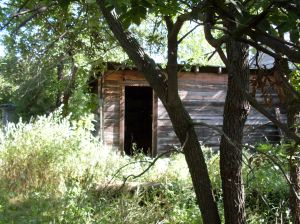 Outbuilding Near House, Original House, Homestead - August 2009
