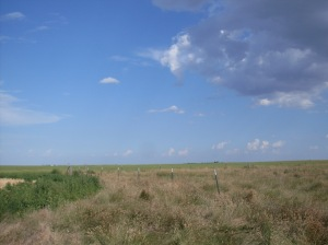 Pasture to South