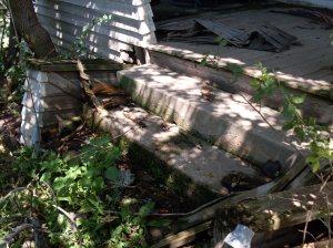 Back Porch Steps, Farm House, Homestead - Belle Honeysuckle, Nightshade, Weeds - August 2009