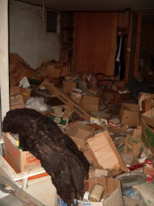 Big Basement Room, Black Fur Coat - September 2009