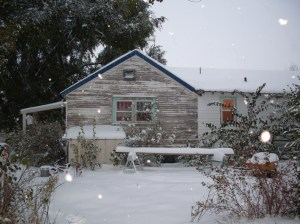 House in Ovid, North Side, Snowy - October 10, 2009