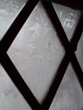 Frost Ice Pattern on Front Door, Ovid - December 2009