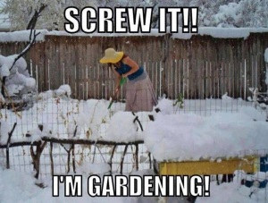 Screw it! I'm gardening!