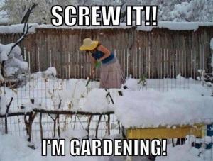 Screw it! I'm gardening!