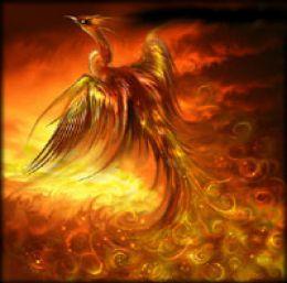 Phoenix on ground in fire