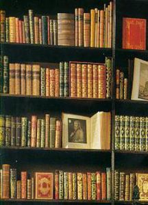 Old, Fascinating Books on Shelves